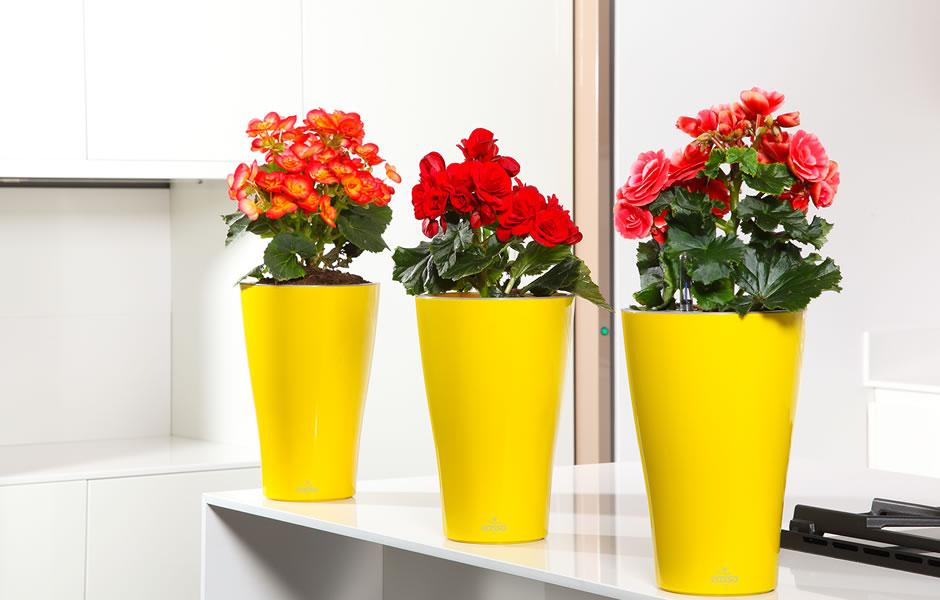 Ukrasne posude za cvijeće Banja Luka cvjećara Uniko